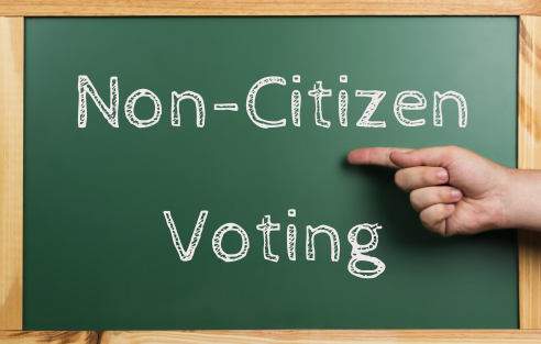 Non-citizen voting blog image